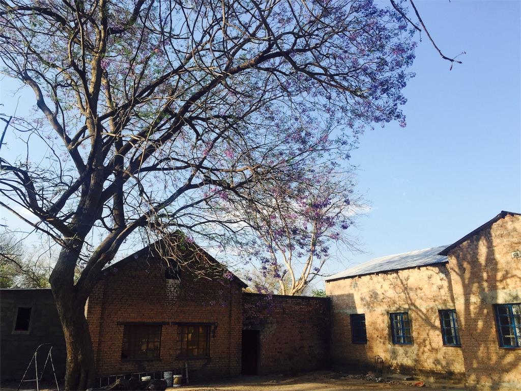 f:id:TPVC28-Namibia:20161006202430j:image
