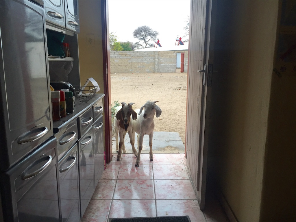 f:id:TPVC28-Namibia:20161009232831j:image