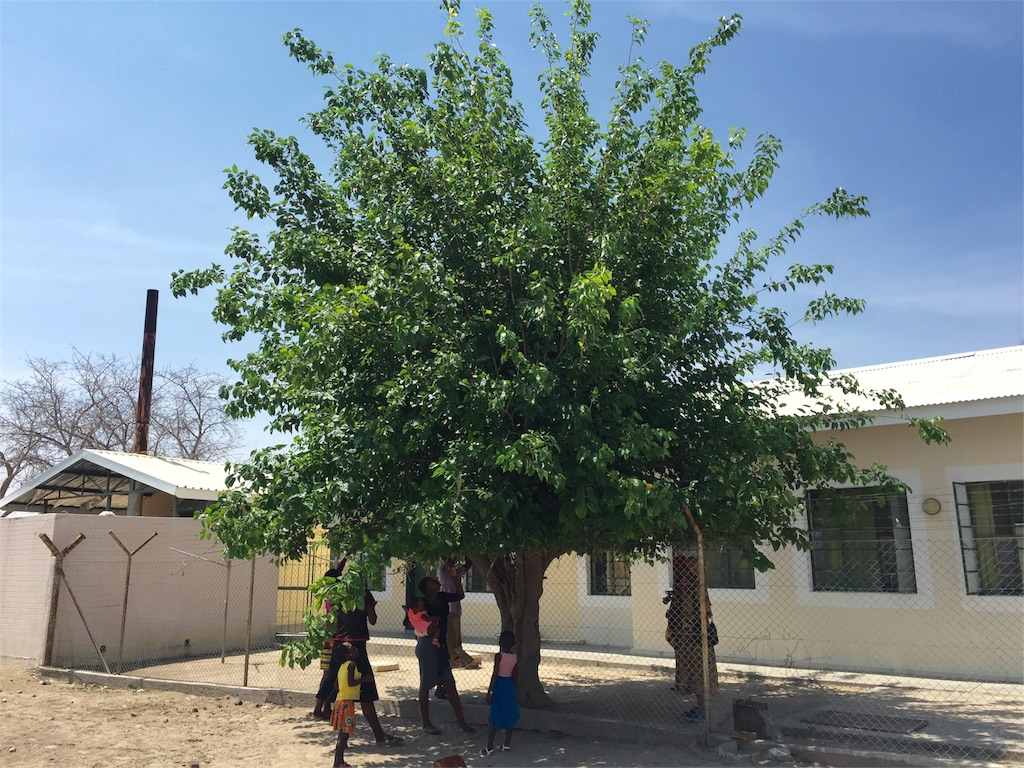 f:id:TPVC28-Namibia:20161010034722j:image