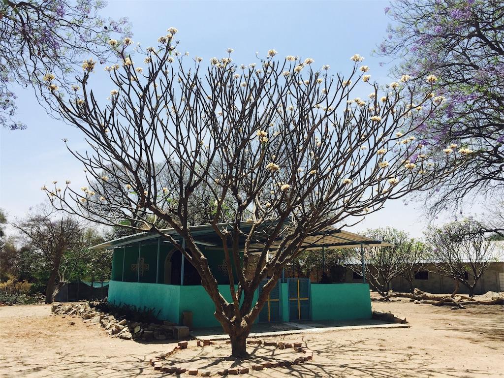 f:id:TPVC28-Namibia:20161010141932j:image