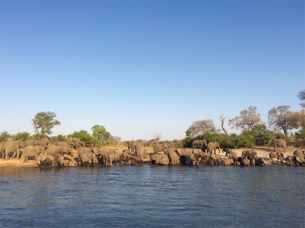 f:id:TPVC28-Namibia:20161017043526j:image