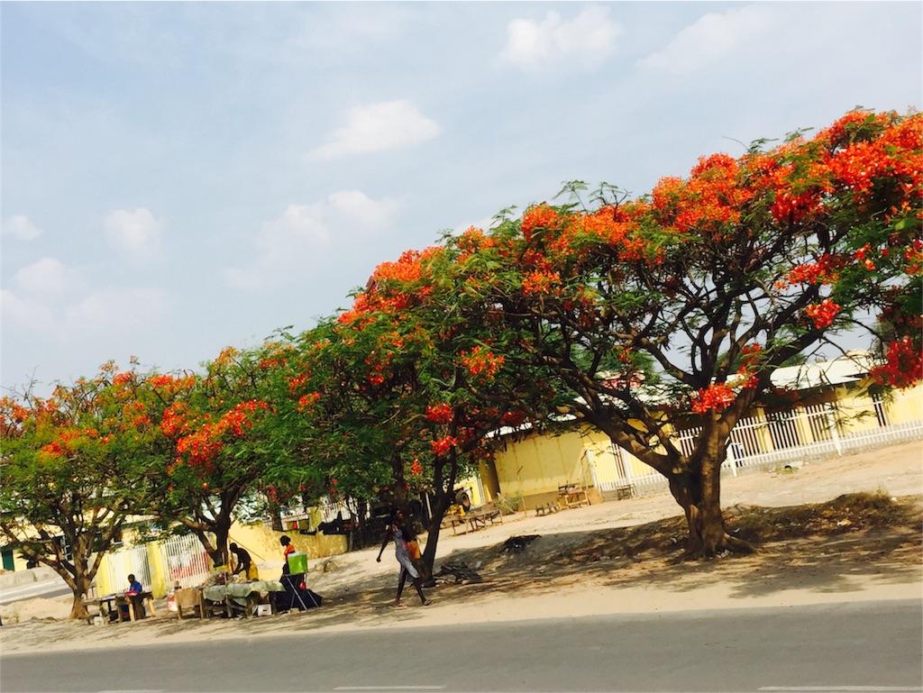 f:id:TPVC28-Namibia:20161023232826j:image
