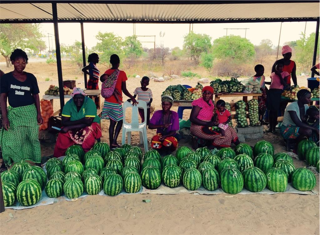 f:id:TPVC28-Namibia:20161106061117j:image