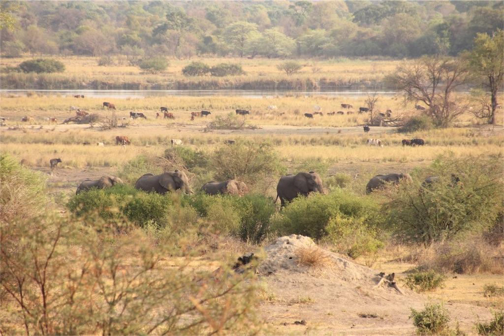 f:id:TPVC28-Namibia:20161106061218j:image