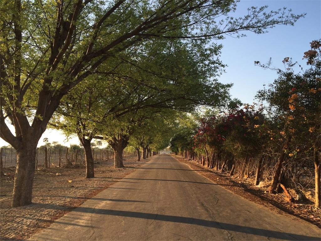 f:id:TPVC28-Namibia:20161118033018j:image