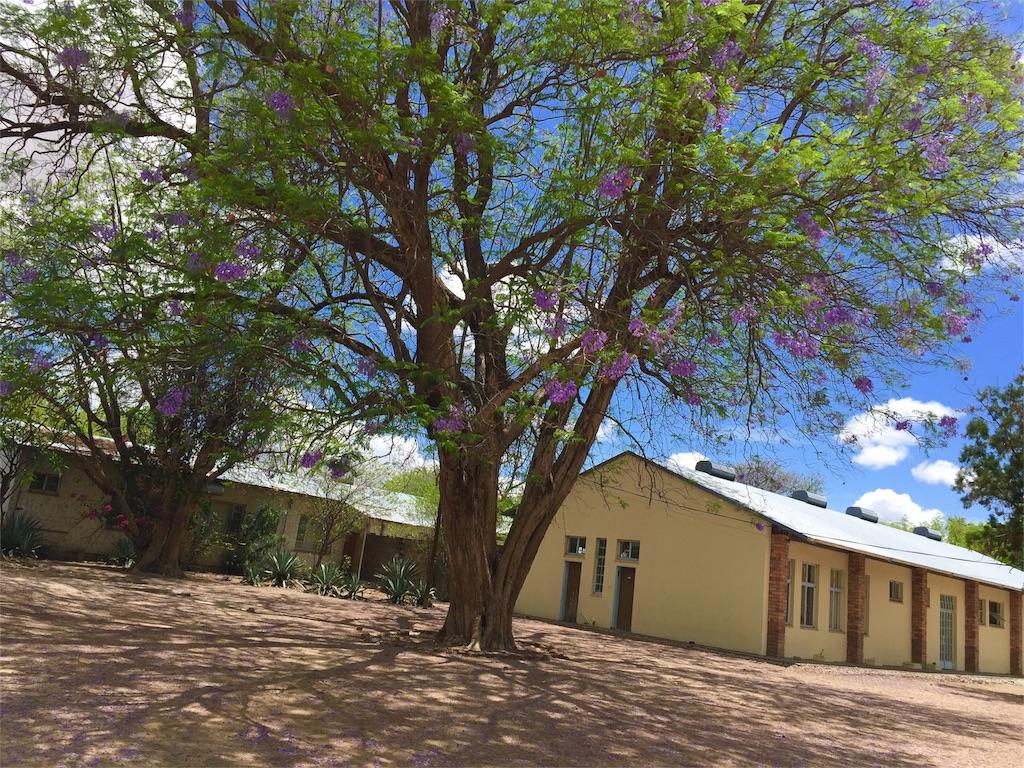 f:id:TPVC28-Namibia:20161126153017j:image