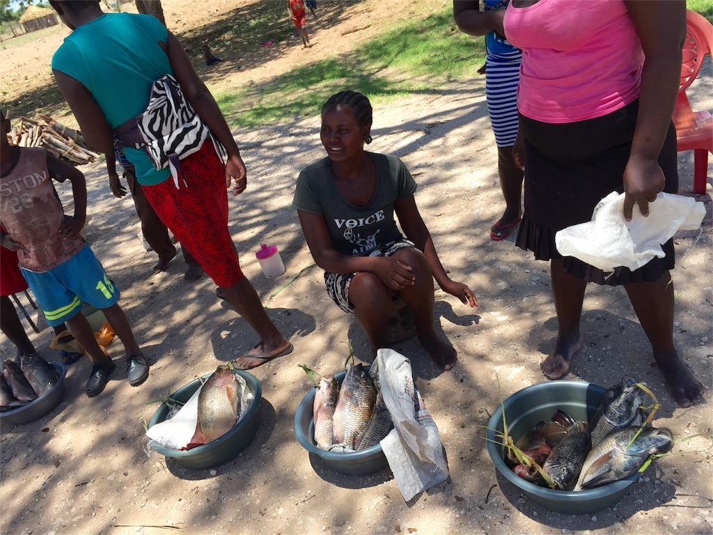 f:id:TPVC28-Namibia:20161206163439j:image