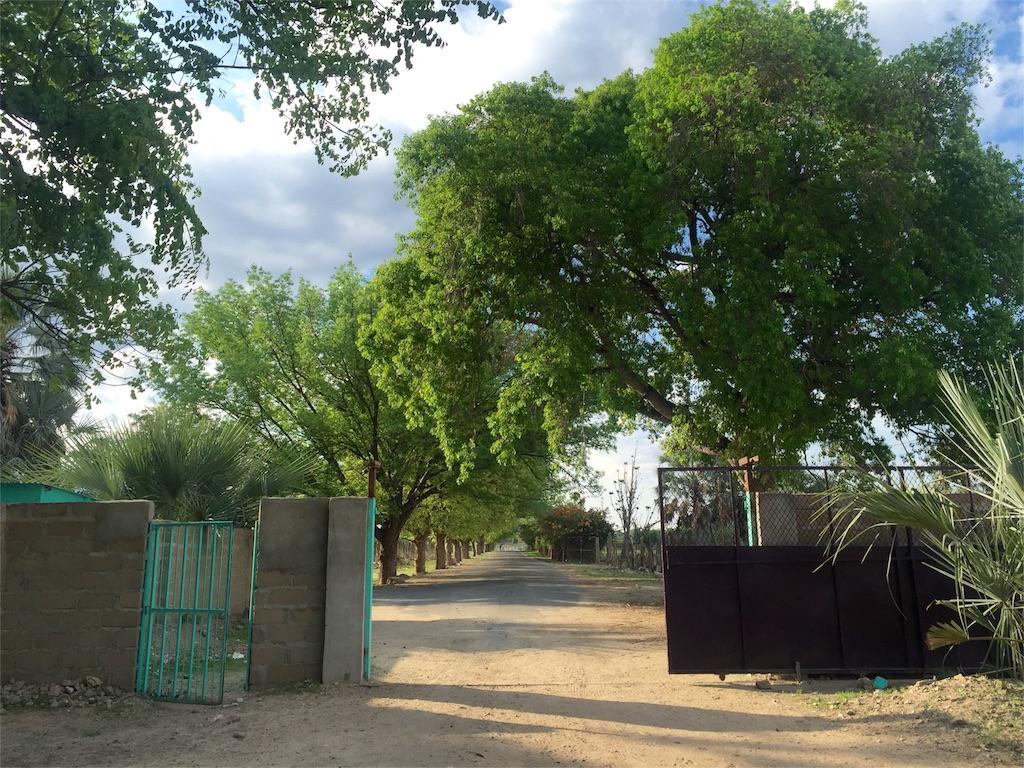 f:id:TPVC28-Namibia:20161207105048j:image
