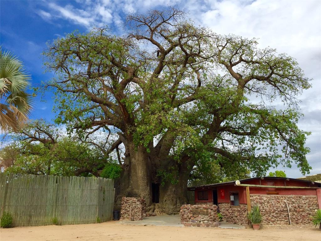f:id:TPVC28-Namibia:20161210060202j:image