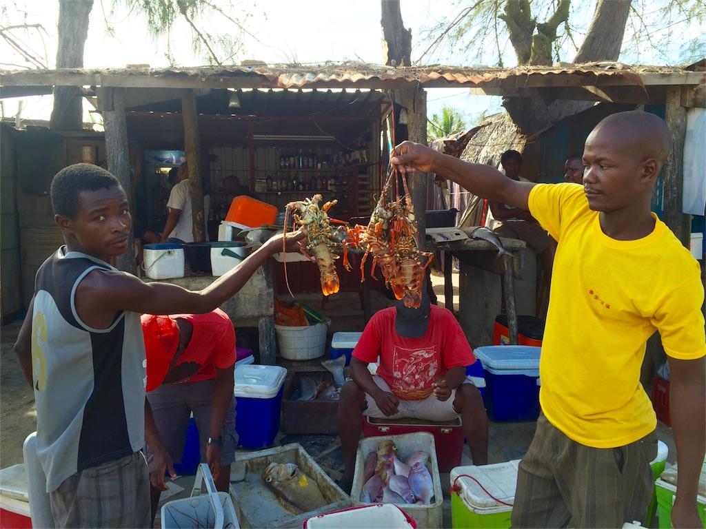 f:id:TPVC28-Namibia:20161215122213j:image