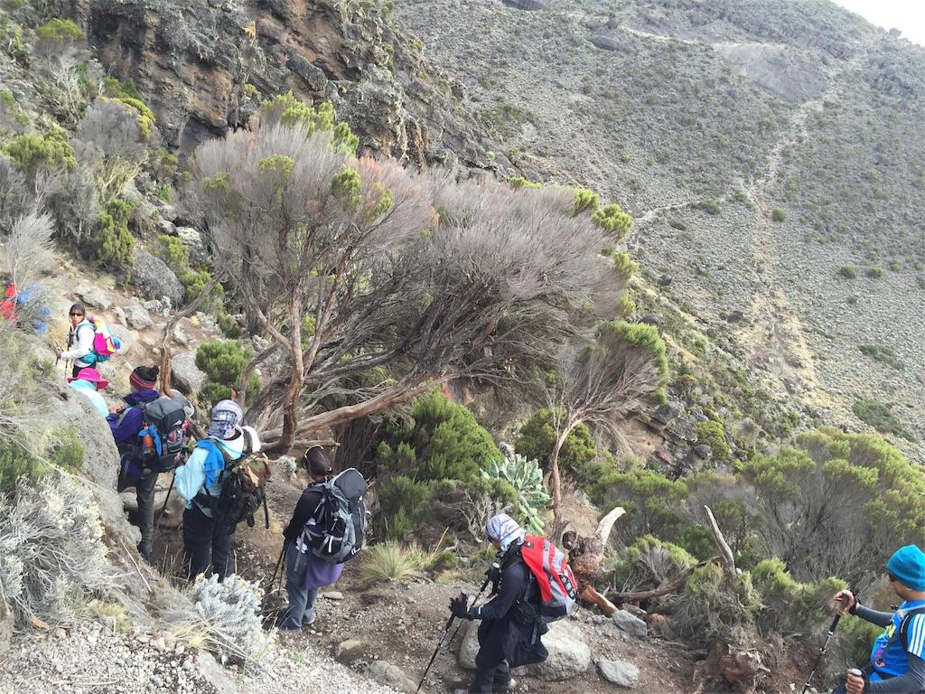 f:id:TPVC28-Namibia:20161226224558j:image