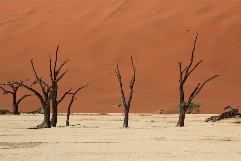 f:id:TPVC28-Namibia:20170102054704j:image