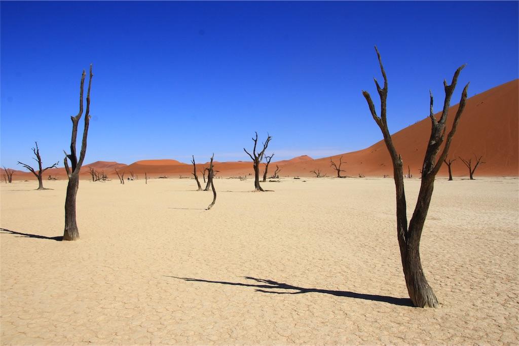 f:id:TPVC28-Namibia:20170102054758j:image
