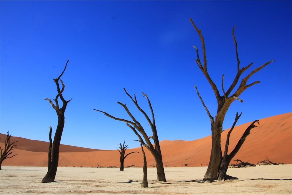 f:id:TPVC28-Namibia:20170102055530j:image