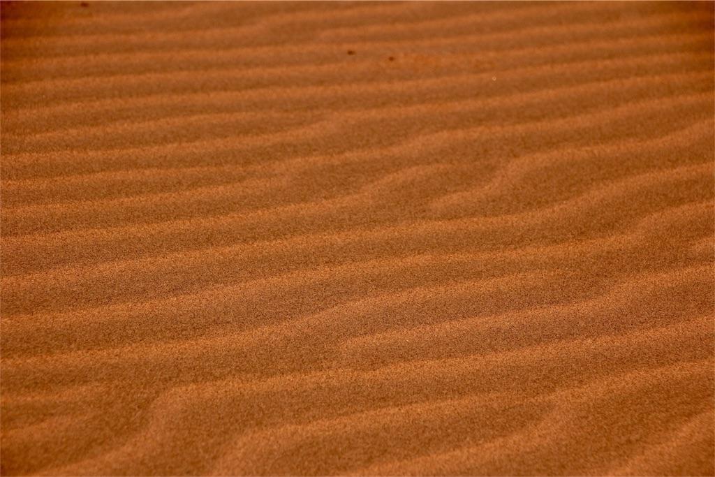 f:id:TPVC28-Namibia:20170102060414j:image
