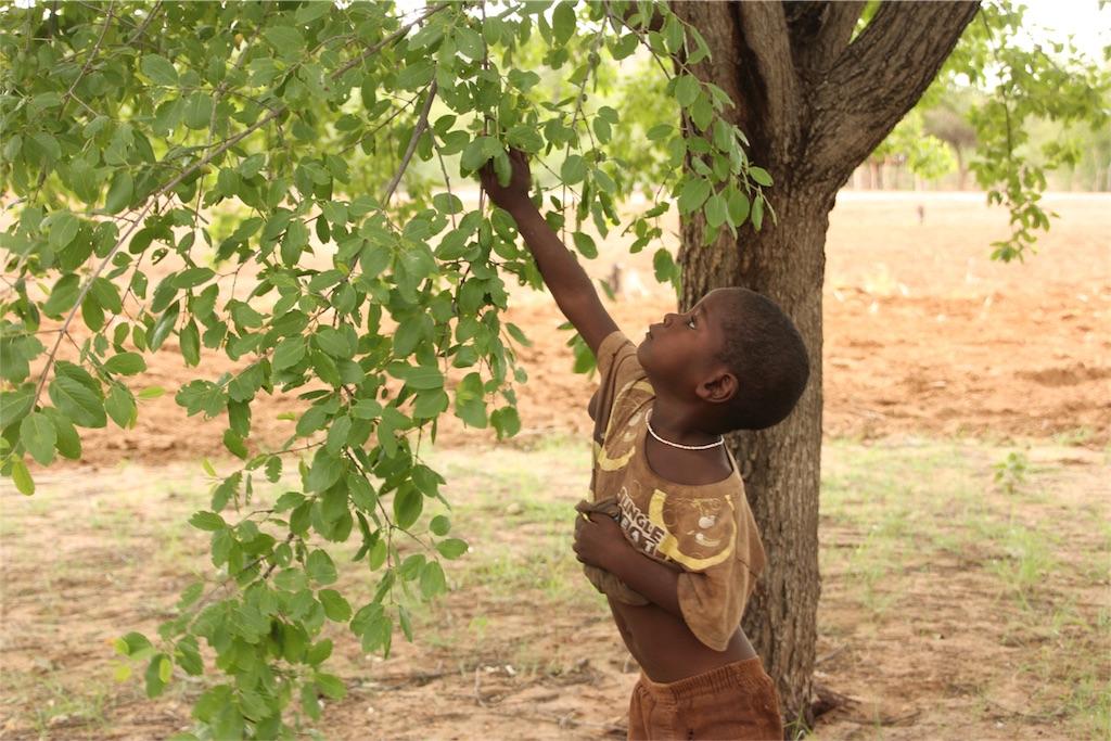 f:id:TPVC28-Namibia:20170212142900j:image