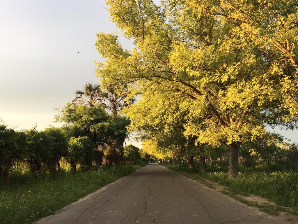 f:id:TPVC28-Namibia:20170222224702j:image