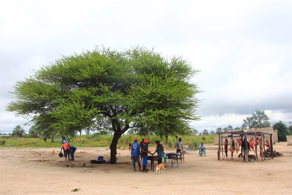 f:id:TPVC28-Namibia:20170314131232j:image