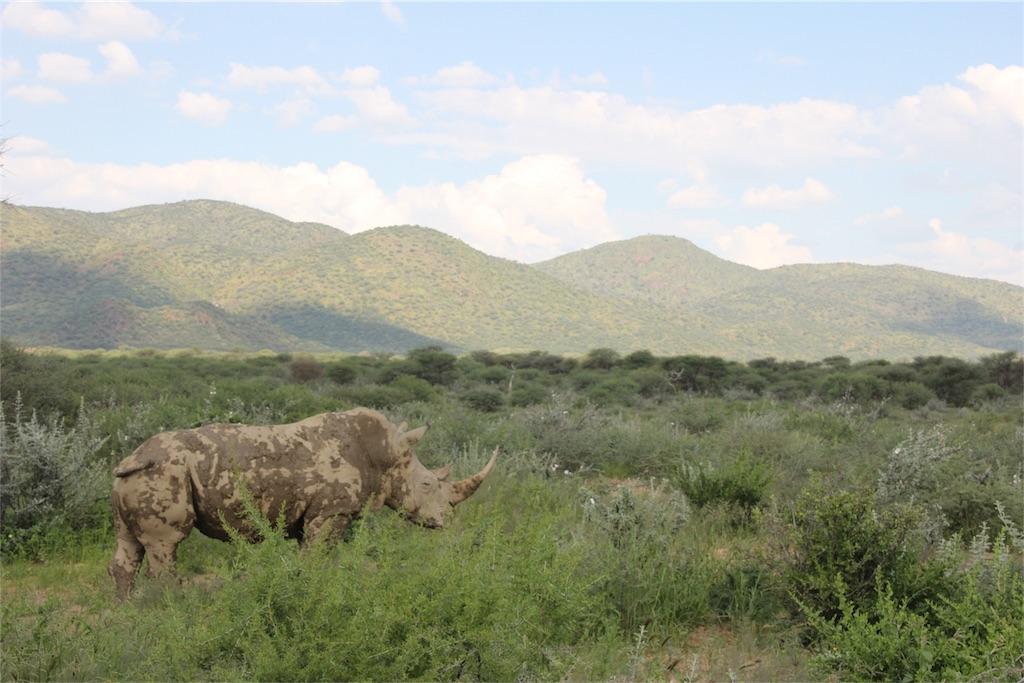 f:id:TPVC28-Namibia:20170319151540j:image