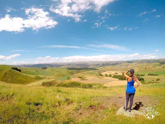ニュージーランドでファームジョブをしたい人