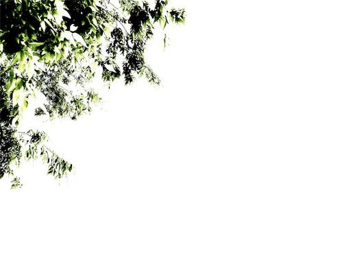 f:id:T_chan:20170430175534j:image