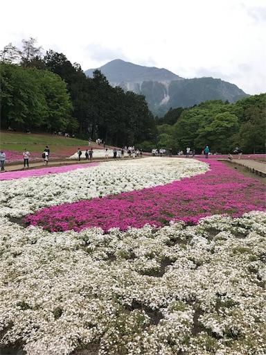 f:id:T_chan:20170512185340j:image