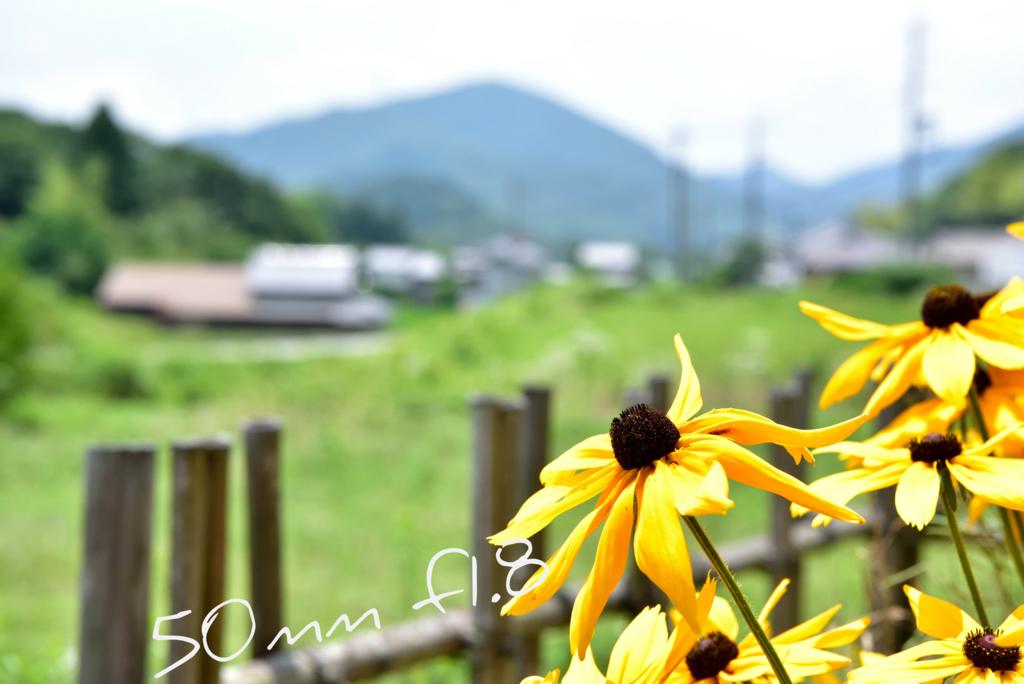 f:id:T_yuki:20170707173540j:plain