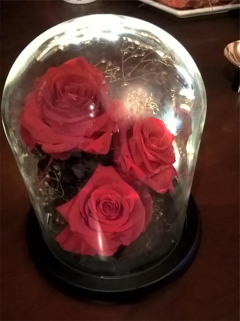 薔薇 / Roses