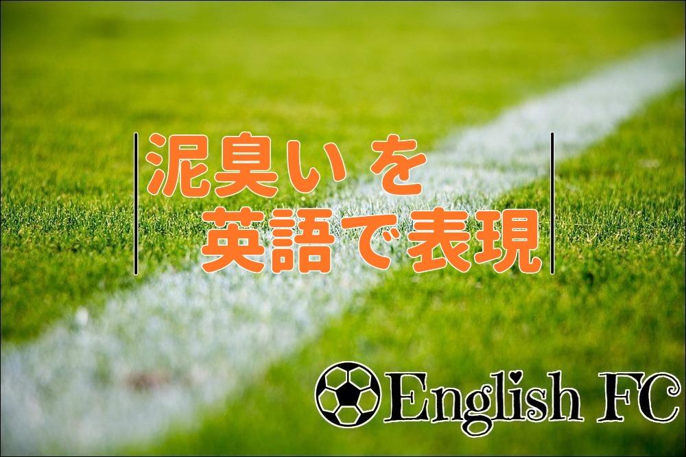 f:id:Taipiii:20190215224735j:plain