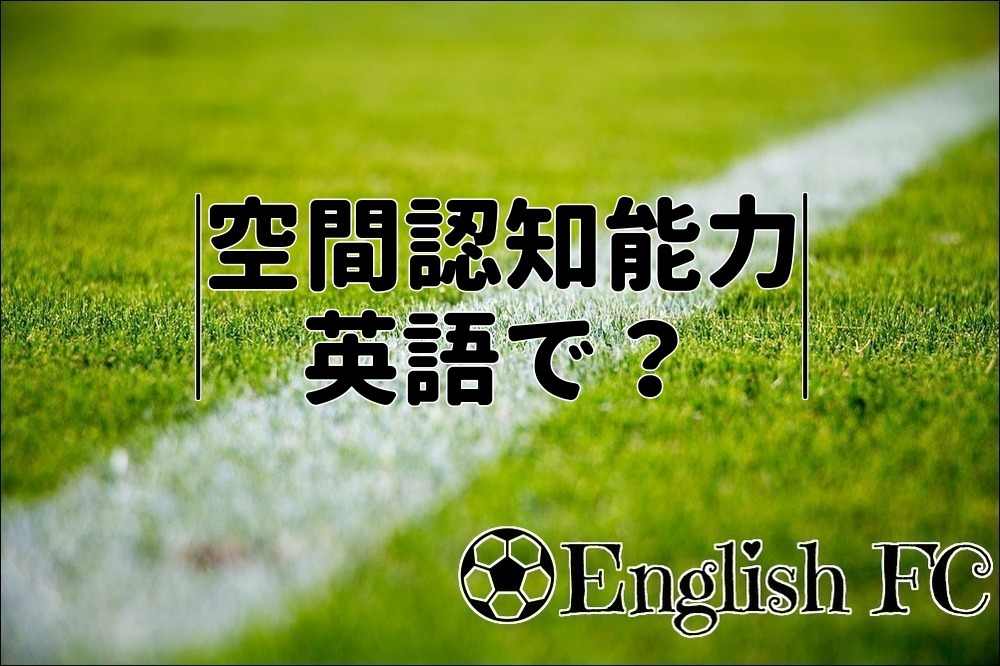 f:id:Taipiii:20190217125932j:plain