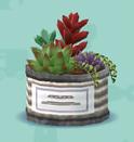 ポケ森の多肉植物