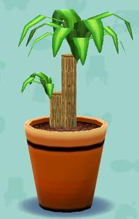 ポケ森の幸福の木