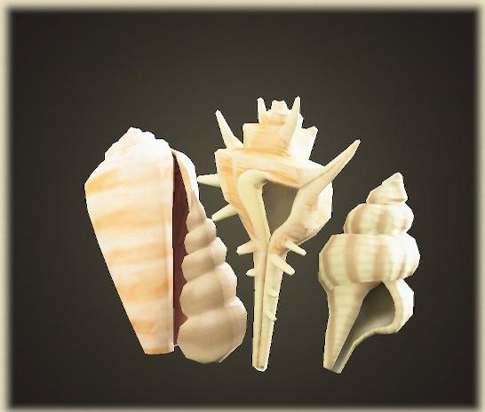 あつ森の貝殻のスクリーン