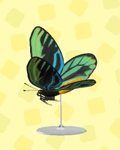 あつ森のおおいなるチョウの模型