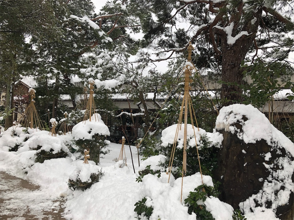 f:id:TakakoSakaba:20180131213638j:image