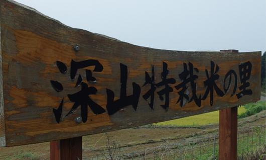 f:id:Takashi-Umeno5368:20170905195120p:plain