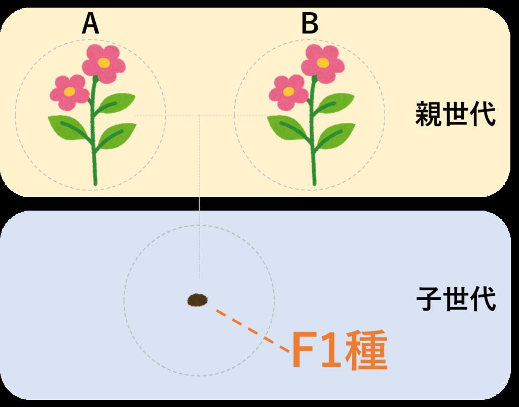 f:id:TakashiKadomatsu:20180318062142p:plain