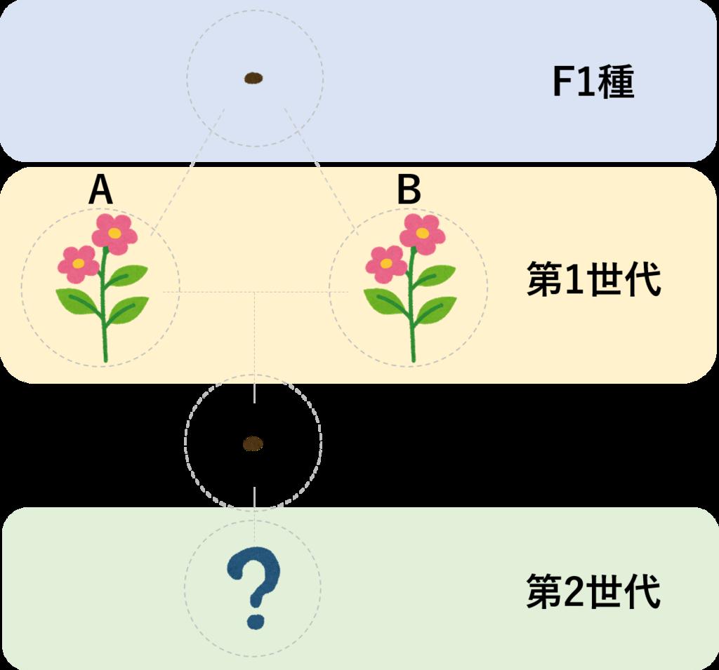 f:id:TakashiKadomatsu:20180318065546p:plain