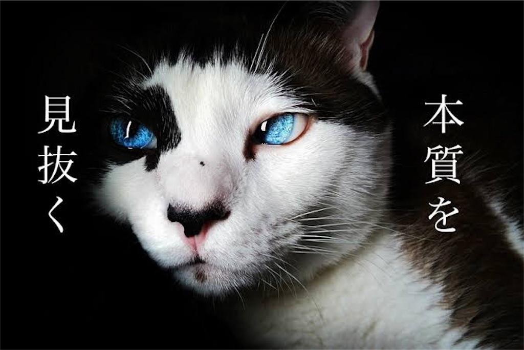 f:id:Takechan24:20191014031210j:image