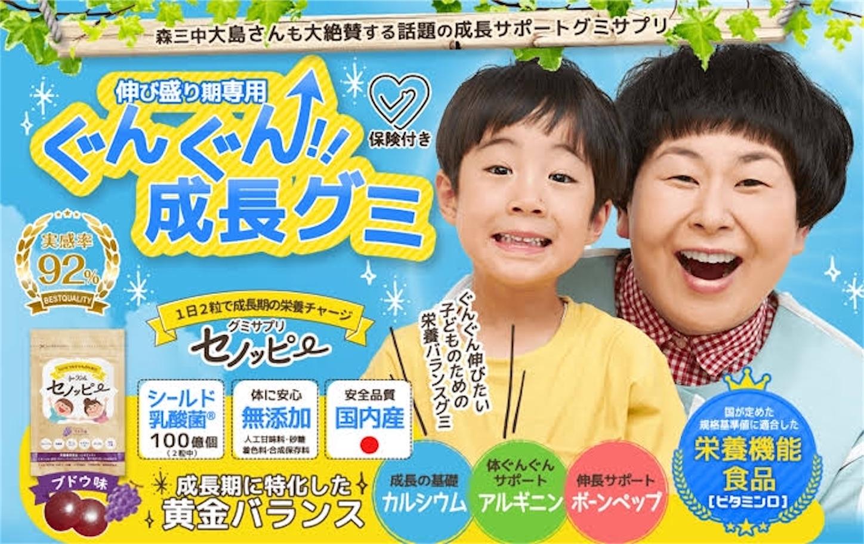 f:id:Takechan24:20191203164757j:image