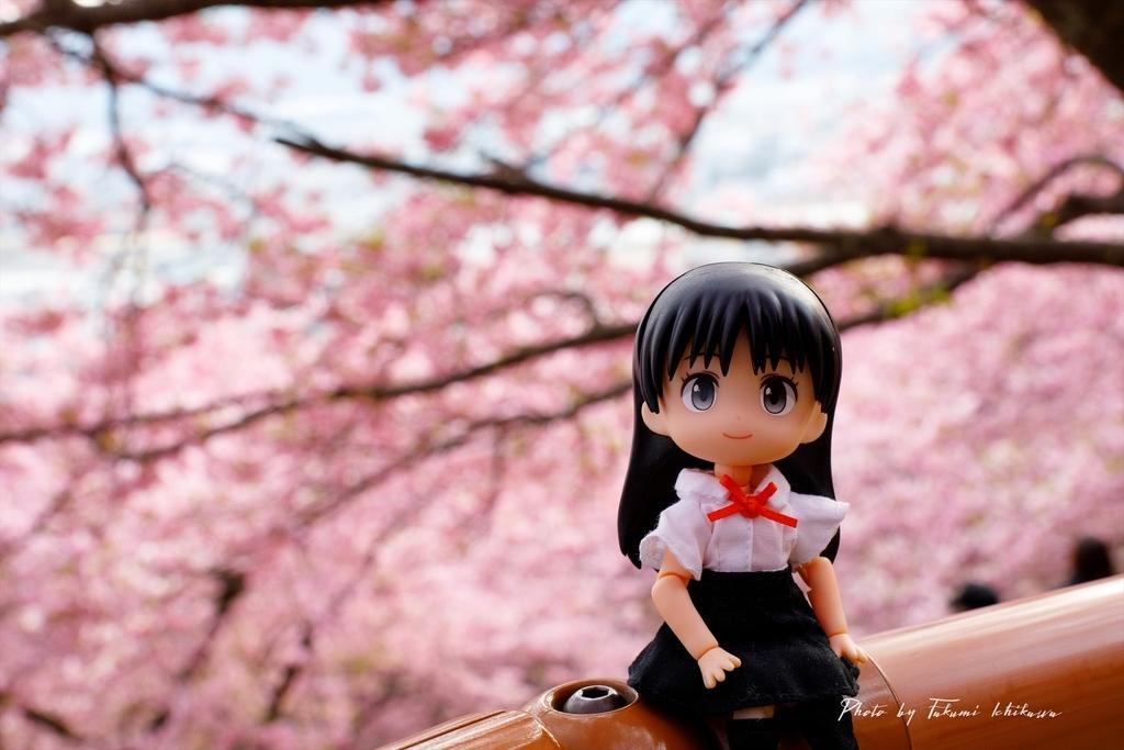 f:id:Takumi_0331:20190307213922j:plain