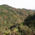 2011/11/27 養老渓谷