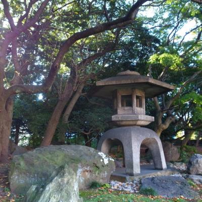 2012/11/10 旧岩崎邸庭園
