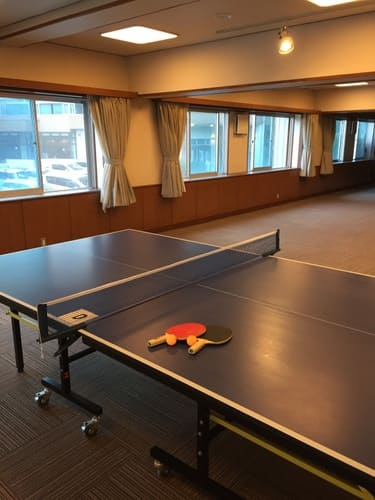 ホテル大野屋卓球台写真