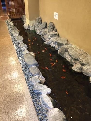熱海金城館五葉館1階の池の写真