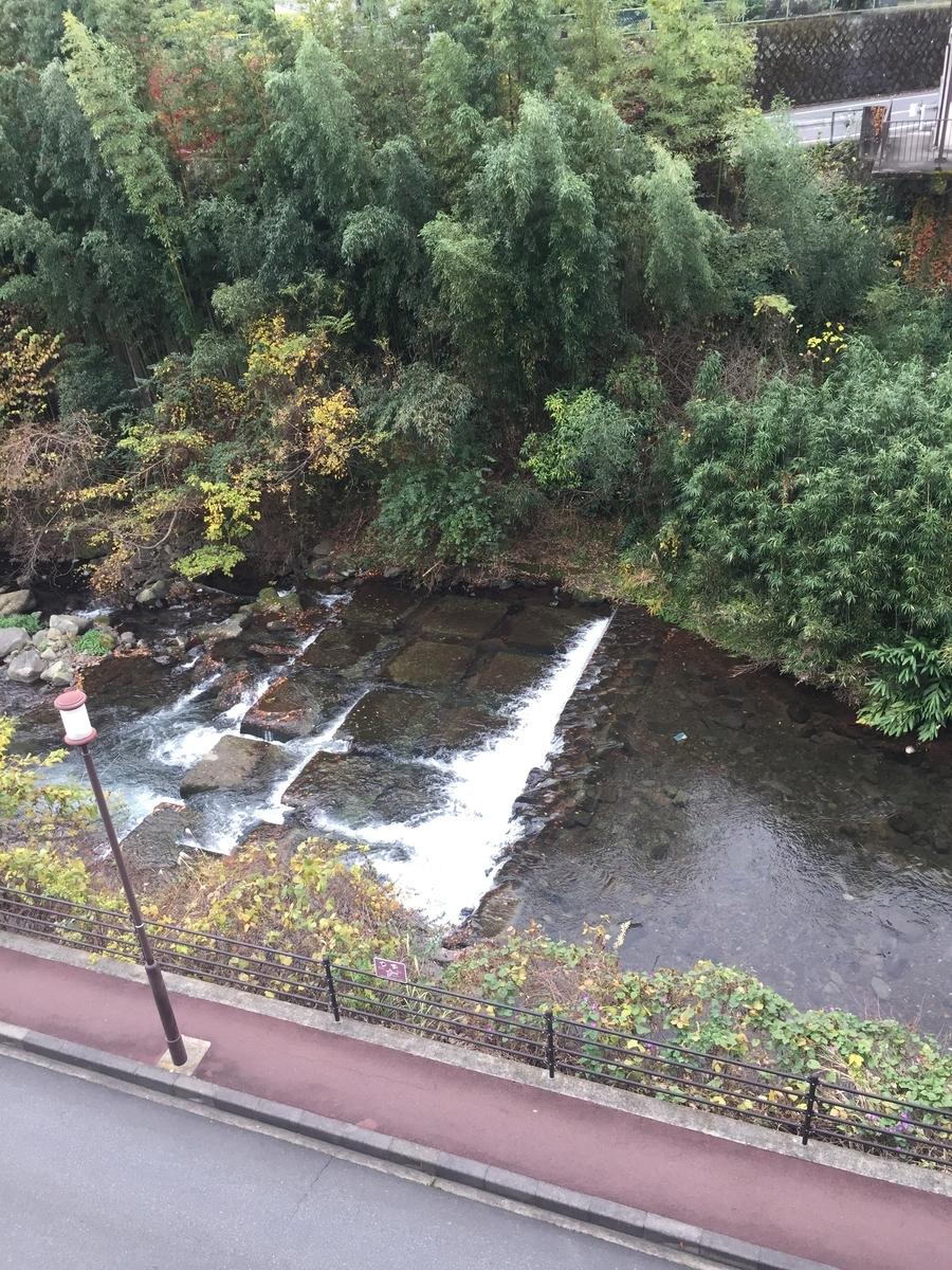千歳川の写真