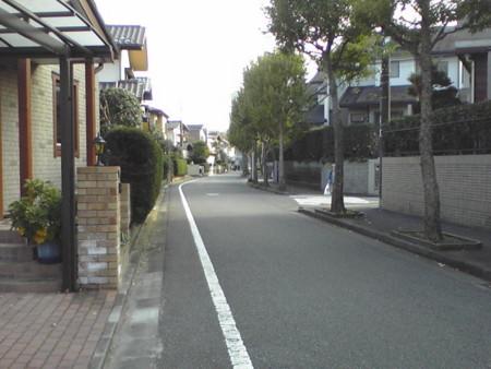 f:id:Tanuki:20081114141539j:image