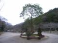 鎌倉中央公園1