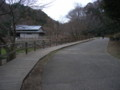 鎌倉中央公園9