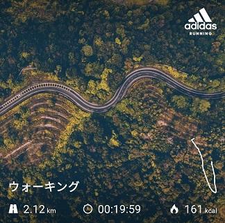 f:id:Tanukichi_papa:20200119215719j:plain